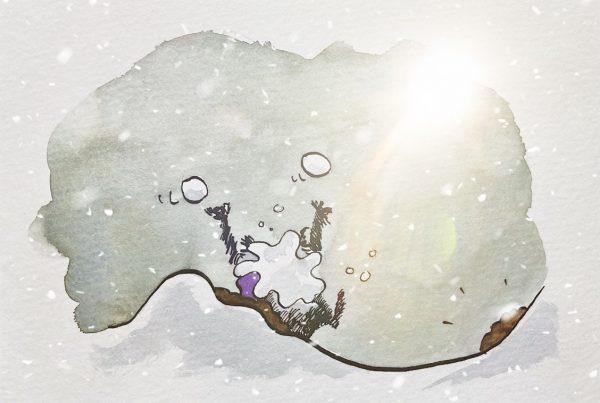 Bild des Waschbären in einer Schneewehe, nachdem er einen dicken Schneeball ins Gesicht bekommen hat.